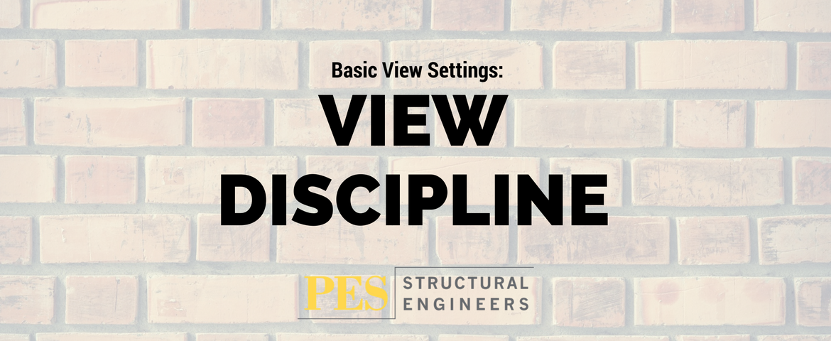 Basic View Settings: View Discipline